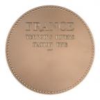 Médaille bronze - France aux armes des provinces Revers