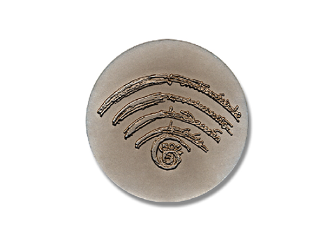 Médaille nickel-bronze - Damião de Góis Revers