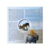 Coffret BU Belgique 2014 (visuel complémentaire 1)
