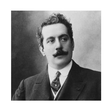 2 euro commémorative Saint-Marin 2014 - Giacomo Puccini (visuel complémentaire 2)