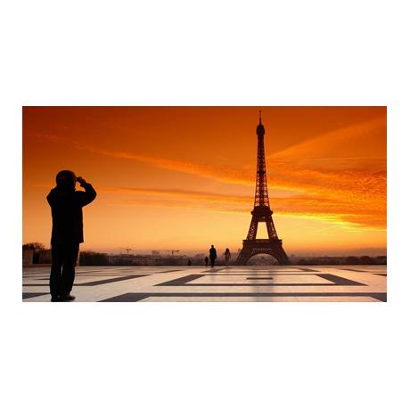 (FMED.Méd.souv.2015.CuNi-2.1) Jeton touristique - Champ de Mars (visuel complémentaire)
