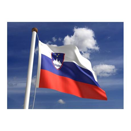 2 euro commémorative Slovénie 2016 - Indépendance de la Slovénie (visuel complémentaire)