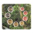 (EUR24.CofBU&FDC.2016.Cof-BU.cp5.10376) Brilliant Uncirculated coin set Andorra 2016 Reverses