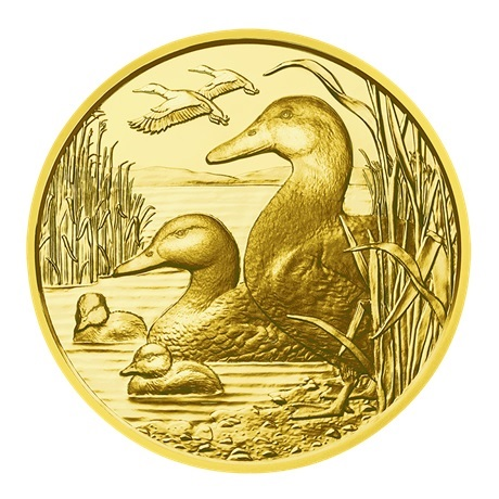 100 euro Autriche 2018 or BE - Canard colvert Revers