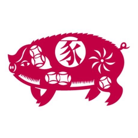 20 euro France 2019 argent BE - Année du Cochon (visuel complémentaire)