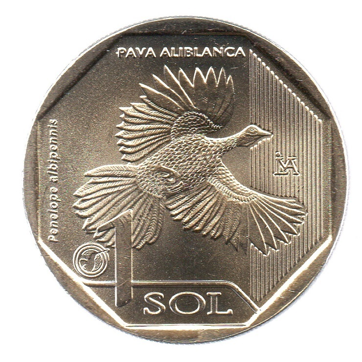 (W173.100.2018.3.spl.000000001) 1 Sol White-winged guan 2018 Reverse (zoom)