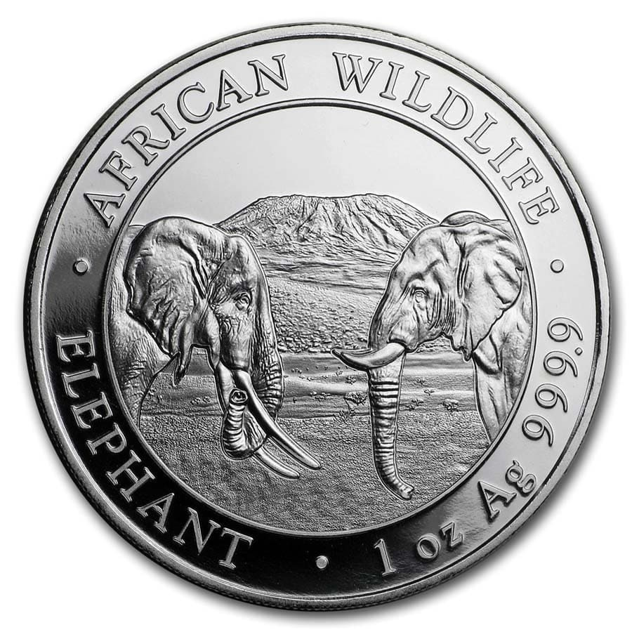 (W203.10000.2020.1.ag.bullco.1) 100 Shillings Somali Republic 2020 1 oz silver - Elephant Reverse (zoom)