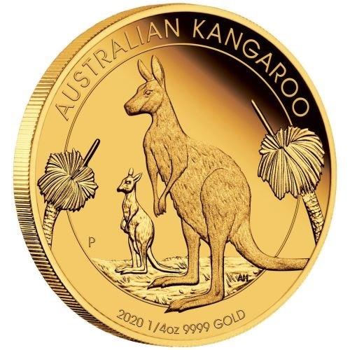 (W017.25.D.2020.0.25.oz.Au.1) 25 Dollars Australia 2020 0.25 oz Proof gold - Kangaroo (edge) (zoom)