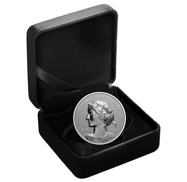 (W037.1.D.2021.179014) 1 Dollar Peace 2021 - Proof silver (case) (zoom)