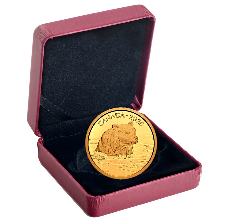 (W037.350.D.2020.178710) 350 Dollars Grizzly Bear 2020 - Proof Au (case) (zoom)