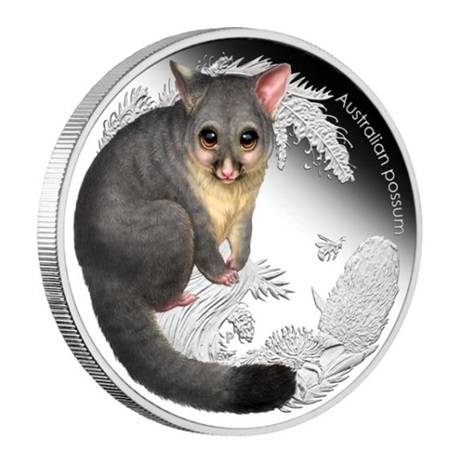 (W017.50.C.2013.13S87AAA) 50 Cents Australie 2013 0,50 once argent BE - Opossum Revers