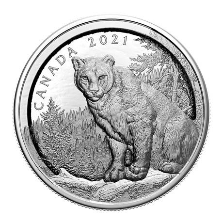 (W037.50.D.2021.200455) 50 Dollars Cougar à relief multiple 2021 - Argent BE Revers
