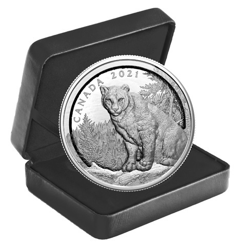 (W037.50.D.2021.200455) 50 Dollars Multilayered cougar 2021 - Proof Ag (case) (zoom)