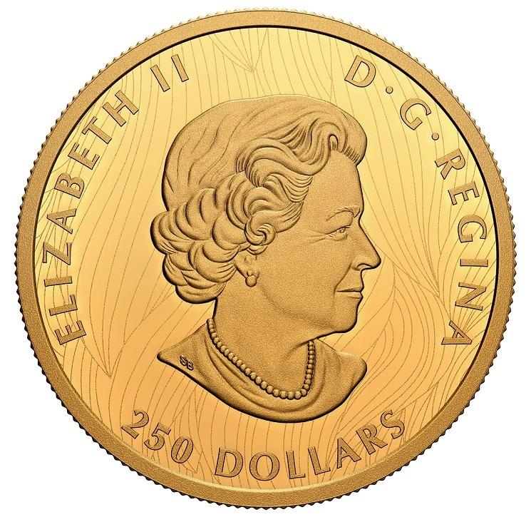 (W037.250.D.2021.201331) 250 Dollars Bold Bison 2021 - Proof gold Obverse (zoom)