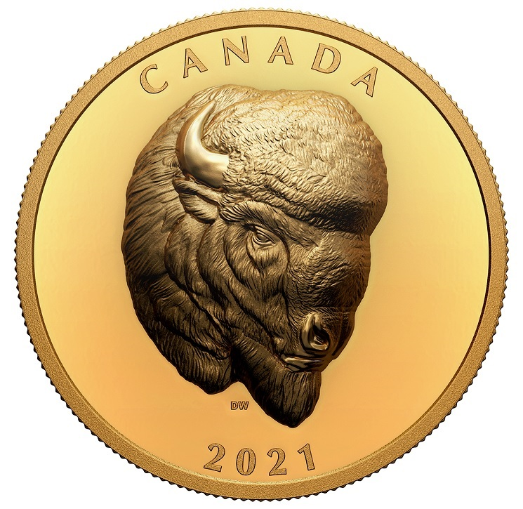 (W037.250.D.2021.201331) 250 Dollars Bold Bison 2021 - Proof gold Reverse (zoom)