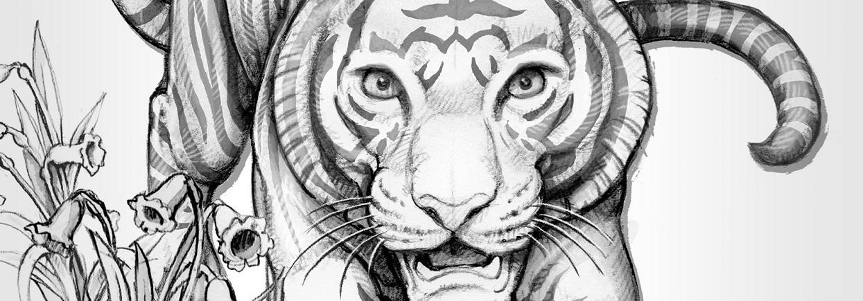 (W185.2.P.2022.UKT22SP) 2 Pounds UK 2022 1 oz Proof silver - Year of Tiger (blog illustration)